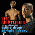 THE NEPTUNES Samples Hip Hop Drum Sound Loops Beats  *DL*
