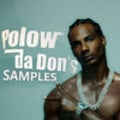 Thumbnail POLOW DA DON sample LIBRARY wav MPC drum kit *download*